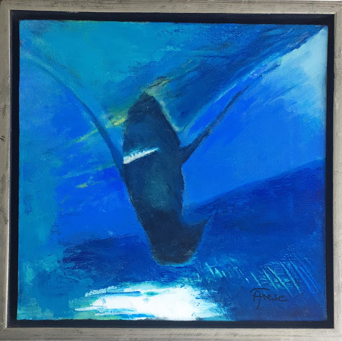 Dancing Shark  30x30
