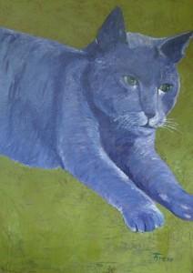 Den Blå Kat 70x50